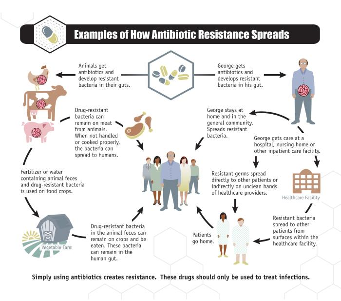 Wyoming: Rare antibiotic-resistant bacterial infection reported in Cheyenne - Outbreak News Today