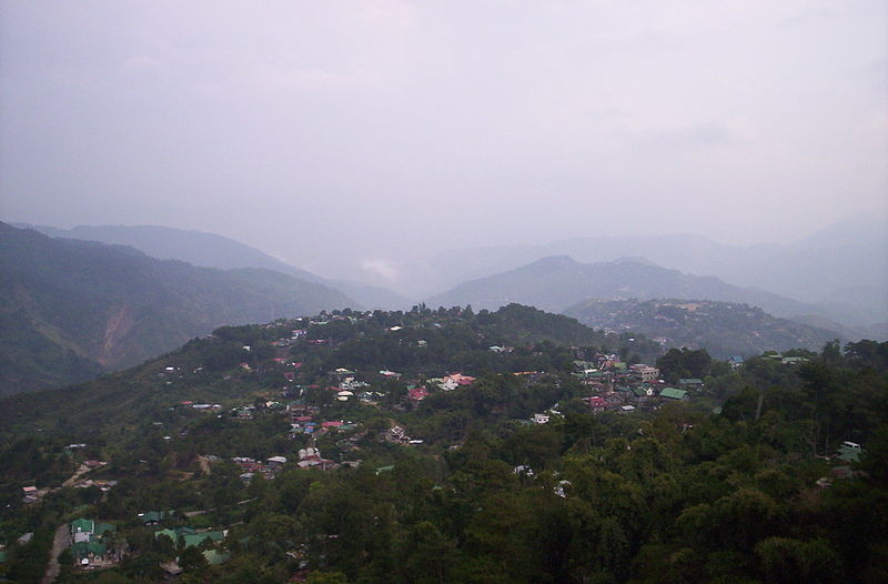 Public domain image/https://commons.wikimedia.org/wiki/File:04_16_2006_Mines_View_Park_Baguio_City_(3).jpg
