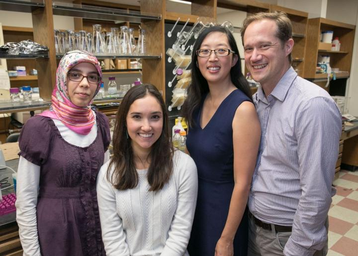 Elif Tekin, Casey Beppler, Pamela Yeh and Van Savage. Image/Reed Hutchinson/UCLA