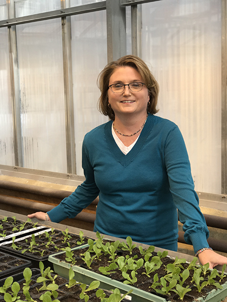 Amanda Deering, Purdue professor in the Department of Food Sciences, researches the ability of foodborne pathogens to grow and remain on or in plant tissue such as romaine lettuce. (Photo Purdue)
