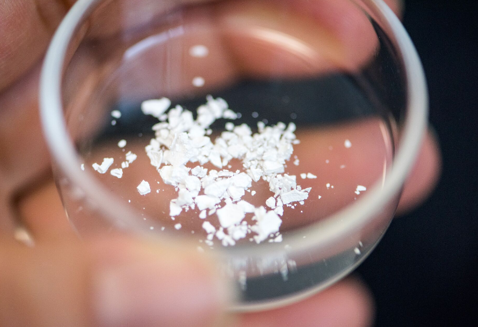 Ensilicated proteins in powder form Image/Chris Melvin--University of Bath