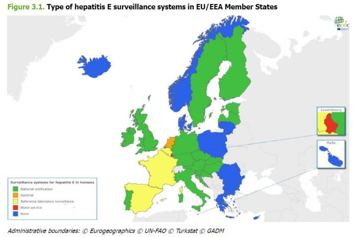 Of the 30 Member States responding to the ECDC survey, 20 (67%) have hepatitis E-specific surveillance systems in place. The remaining 10 countries have no HEV-specific surveillance, but may have generic viral hepatitis surveillance. Image/ECDC/European Centre for Disease prevention and Control