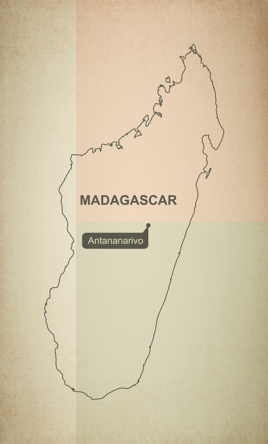 Madagascar plague outbreak case count reaches 500 - Outbreak News Today