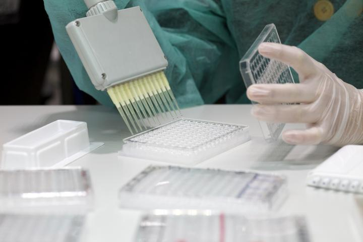 A multipipette is used for handling multiple samples when performing quantitative suspension arrays. Image/Pau Fabregat
