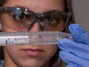 A researcher holds up a vial containing a tick in a UC biology lab Image/Jay Yocis/UC Creative Services