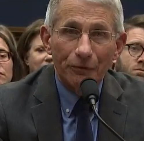 Dr Anthony Fauci Image/Video Screen Shot