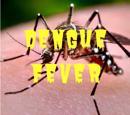 In the Philippines, 622 people died because of the fever