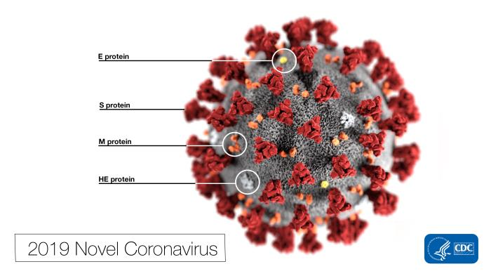 Ontario health officials to hold media briefing on response to coronavirus