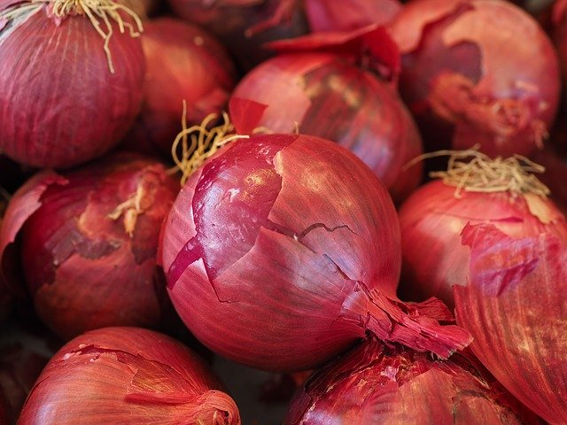 Ottawa County reporting 10 illnesses tied to Salmonella in onions