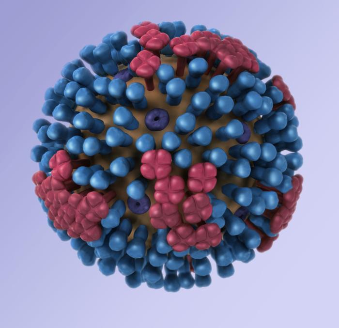 generic influenza virion
