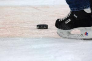 Hockey puck/William D. Moss DOD