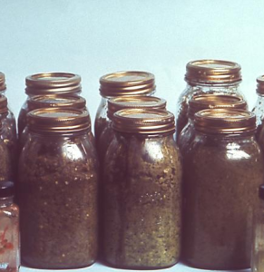 Botulism is often associated with home-canning Image/CDC