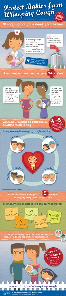 Pertussis infographic/CDC
