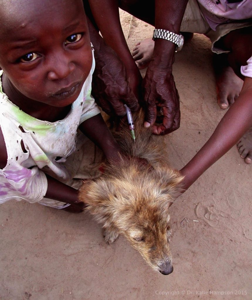 Rabies vaccine/GARC