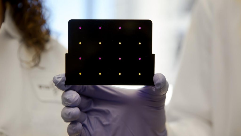 The research was funded by the Wyss Institute for Biologically Inspired Engineering, MIT's Center for Microbiome Informatics and Therapeutics, the Defense Threat Reduction Agency, and the National Institutes of Health. Image/Wyss Institute at Harvard University