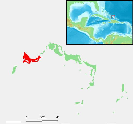Turks and Caicos Islands Providenciales Image/ M.Minderhoud