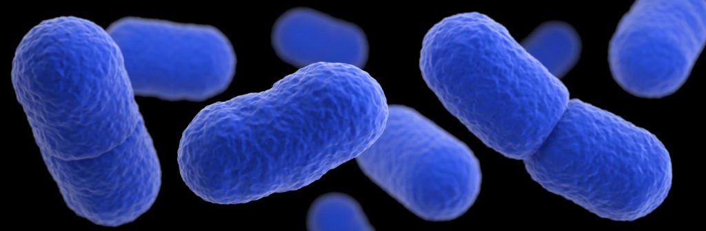Listeria monocytogenes, the common food-borne bacteria depicted in this illustration based on electron microscope imagery, can cause miscarriage, stillbirth and premature labor in pregnant women. Image/CDC/James Archer