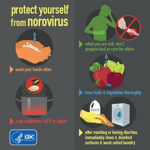 info-norovirus