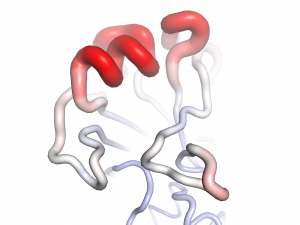 The L194P egg-adaptive mutation dramatically increases the motility of the major epitope on the hemagglutinin of influenza H3 viruses. Red: high motility; white: medium motility; blue: low motility. (Wilson Lab)