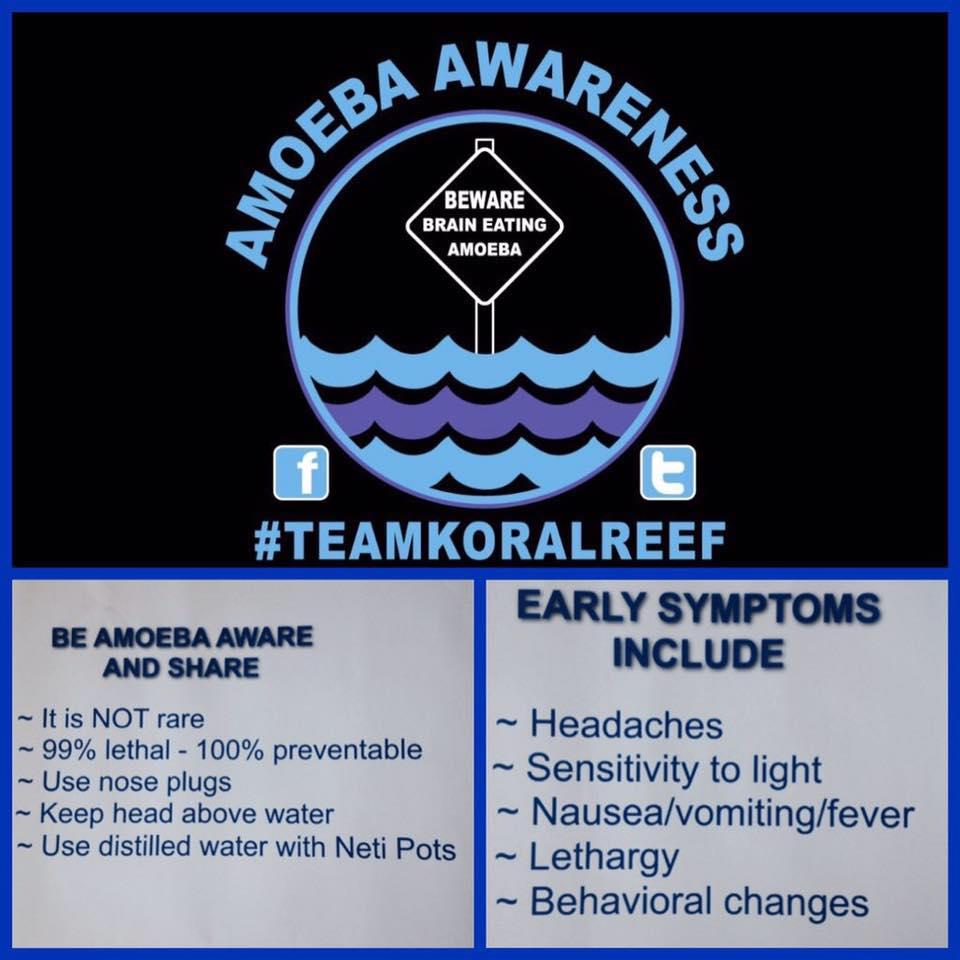 Image/Team Koral Reef Amoeba Awareness