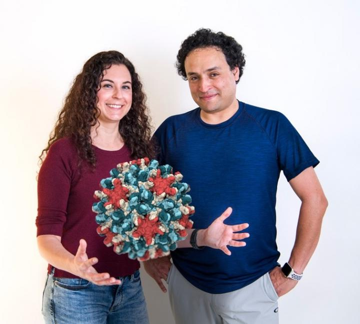 UD researchers, Jodi Hadden and Juan Perilla, have used computer simulations to learn more about the capsid, or protein shell, that encloses the genetic blueprint of the hepatitis B virus. An image of the capsid shows how it is made up of 240 proteins. Image/University of Delaware/ Kathy F. Atkinson