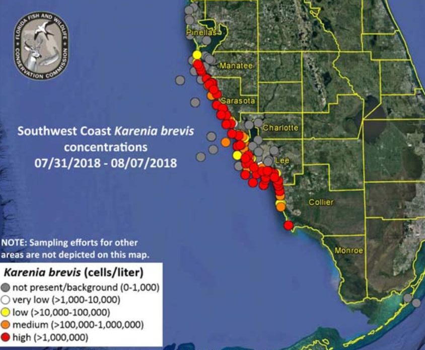 Florida Red Tide Image/Florida Fish and Wildlife Conservation Commission