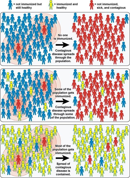 Image/NIH